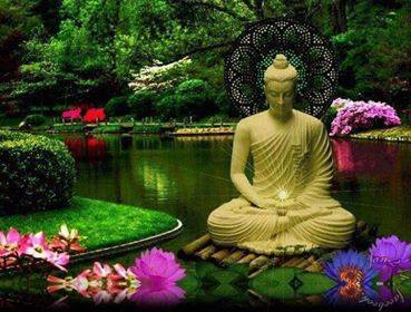beautiful buddha garden